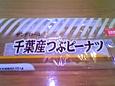 SH520019.JPG